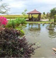 宜蘭--河岸景觀民宿 峇里島八人房